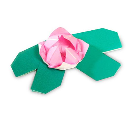 おりがみくらぶ(新宮文明)さんによるすいれんの折り紙