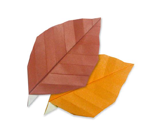 おりがみくらぶ(新宮文明)さんによるかれはの折り紙