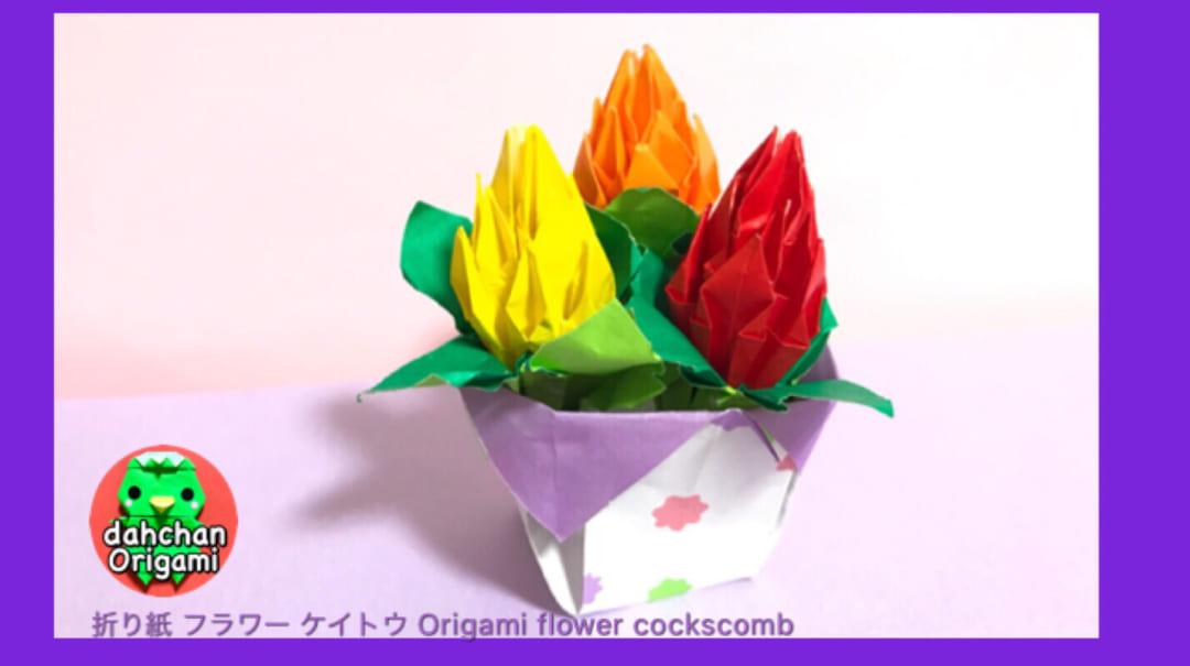 だ〜ちゃんさんによるフラワー✩ケイトウの折り紙