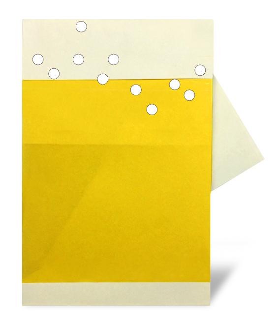 おりがみくらぶ(新宮文明)さんによるびーるの折り紙