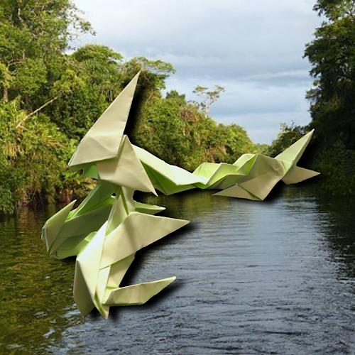 りょうすけ@組み立て折神工房Assembly Origami Workshopさんによる「レシード」 10枚の折り紙